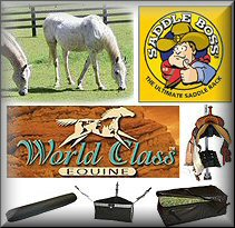 Horse Trailer Interior Tack Accessories
