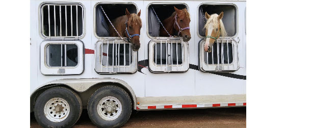 Horse Trailer Parts and Accessories at Trailer Parts Superstore on
